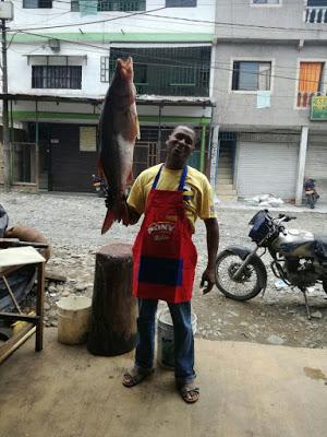 Pesquera San Juan Se Posiciona En Mercado De Istmina