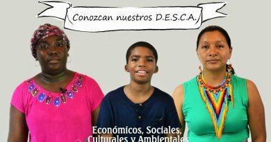 Qué Son Y Cuales Son Los Derechos DESCA. Conózcalos Y Exíjalos.