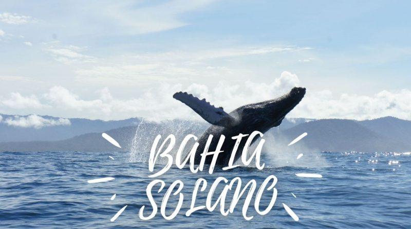 Bahía Solano – Chocó - Un paraíso en el Pacífico Colombiano - Viajes - Hoteles
